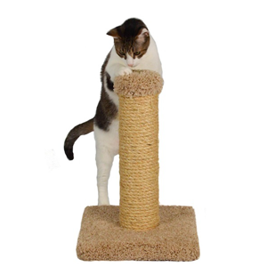 Pet Products: Small Cat Furniture and Cat Scratchers