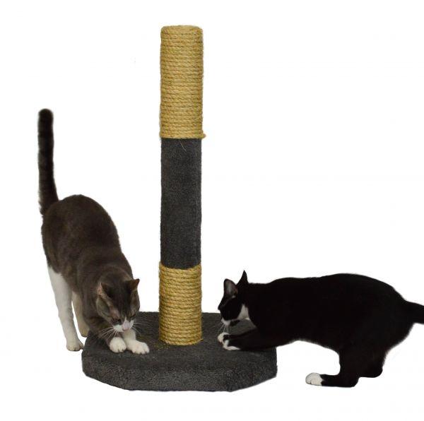 Small Cat Furniture And Cat Scratchers