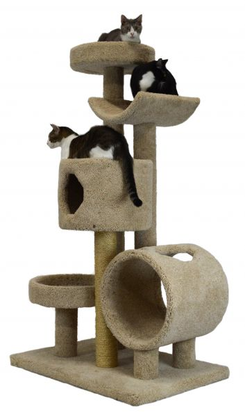 Large Cat Furniture Molly And Friends